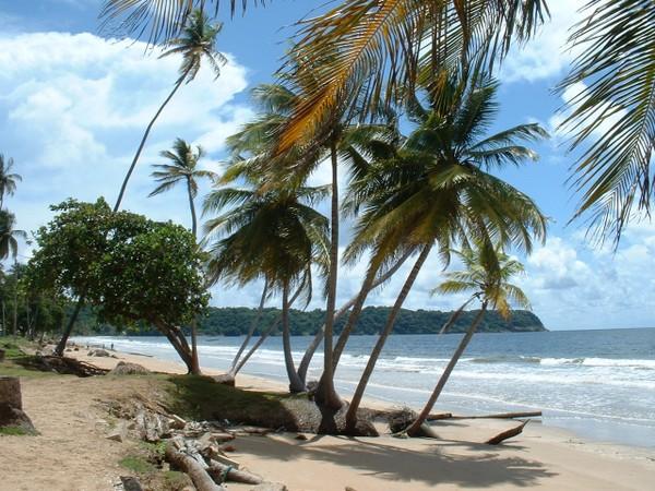 10 Things I Learned in Trinidad So Far #CaribbeanCrawl
