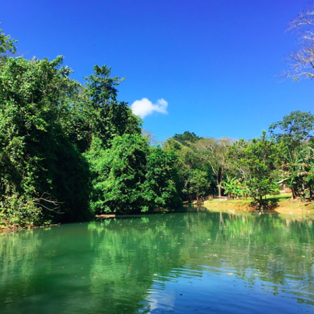 island-routes-river-bumpkin-farm-river-jamaica-strength-of-nature-glamazons-blog-2